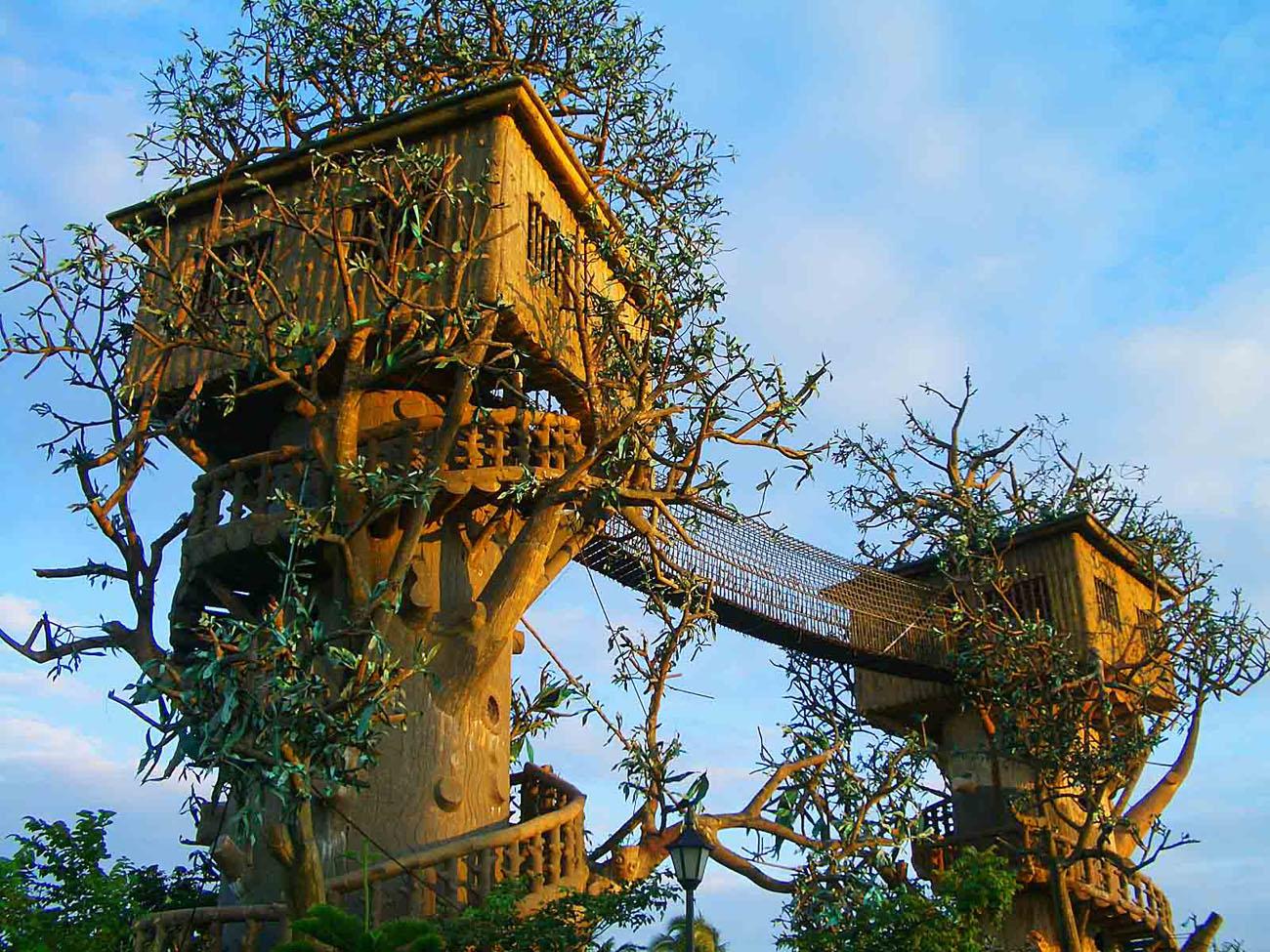 Casa sull albero - Casa sull albero minecraft ...