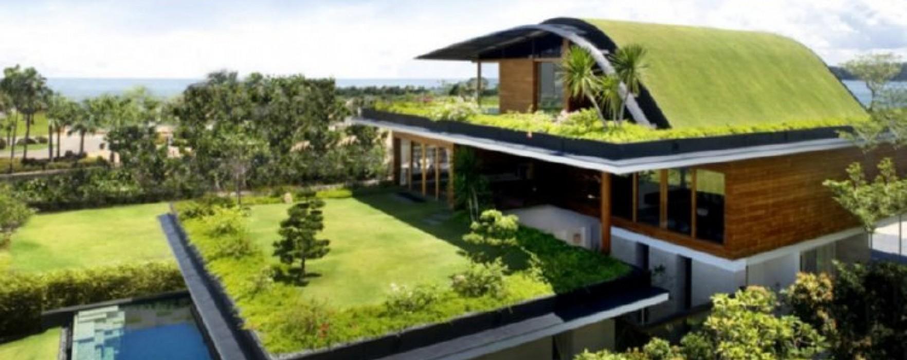 Tetti verdi e case in legno for Tetti di case moderne